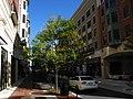 2008 10 11 - Rockville - Gibbs St N2.JPG