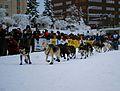 2010 Yukon Quest (4340854871).jpg