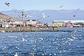 2014-04-29 11-04-03 Iceland - Siglufirði Siglufjörður.JPG