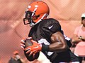 2015 Cleveland Browns Training Camp (20058791368).jpg