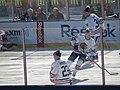 2015 NHL Winter Classic IMG 7877 (16320447332).jpg