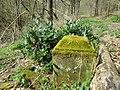 20180414 1870er Grab Habsterwiesental3.jpg
