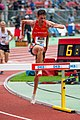 2018 DM Leichtathletik - 3000 Meter Hindernislauf Maenner - Nick Jaeger - by 2eight - 8SC0352.jpg