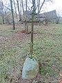 2019, Aristavėlės kapinės, kryžius.JPG