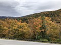 2019-10-26 12 52 22 View northeast across Salthouse Hollow on the west side of Shenandoah Mountain from the Highland Turnpike (U.S. Route 250) in Highland County, Virginia.jpg