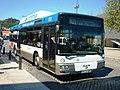 3196 STCP - Flickr - antoniovera1.jpg