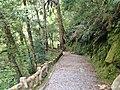 336, Taiwan, 桃園市復興區華陵里 - panoramio (11).jpg