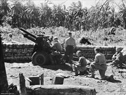 Men stand and kneel behind an artillery gun set behind a wall of logs in a jungle setting