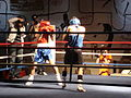 4th Boxing Gala E. Mavropoulos4.JPG