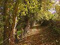 63700 Montaigut, France - panoramio (40).jpg