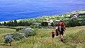 Açores 2010-07-23 (5162396370).jpg