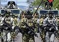 AFEAU Fuerzas militares.jpg