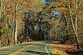AL273 Road Curve in Autumn (30929815610).jpg