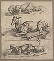 A Doe and Two Lionesses MET DP822137.jpg