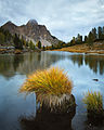 A Pond in Fanes - Flickr - rachel thecat.jpg