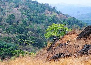 Poomala - A view from Poomala hill