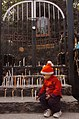 A little child lighting a Candle in front of Sacred Heart Cathedral near Gole Dak Khana on the eve of the Christmas, in New Delhi on December 24, 2006.jpg