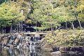 A park in Nara Japan.jpg