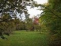 A passeggio nel Bosco...le mie scarpinate - panoramio (5).jpg