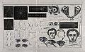 A sheet showing optical instruments, eye examinations, diagr Wellcome V0015919.jpg
