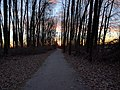 A trail near the dike at sunset - panoramio.jpg