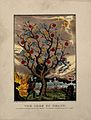 A withered tree bearing apples labelled with sins; represent Wellcome V0007657.jpg