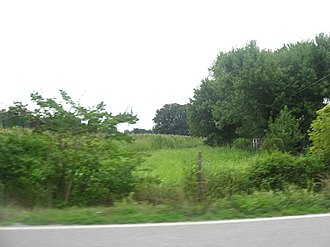 National Register of Historic Places listings in Brown County, Ohio - Image: Aberdeen Mound from a distance
