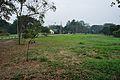 Acharya Jagadish Chandra Bose Indian Botanic Garden - Howrah 2011-02-20 1541.JPG