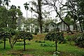 Acharya Jagadish Chandra Bose Indian Botanic Garden - Howrah 2011-02-20 1611.JPG