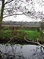 Across the dyke - geograph.org.uk - 616867.jpg