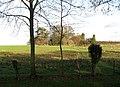 Across the fields to Wreningham - geograph.org.uk - 1614151.jpg