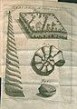 Acta Eruditorum - I fossili, 1733 – BEIC 13426913.jpg