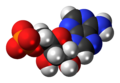 Adenosine-monophosphate-anion-3D-spacefill.png