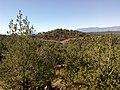 Aerie Trail, Sedona, Arizona - panoramio (4).jpg