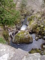 Afon Hirnant - geograph.org.uk - 139778.jpg