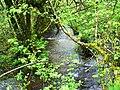 Afon Tigen, Pont Ty-coed, Fron-isaf - geograph.org.uk - 1320290.jpg