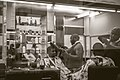 African Barber - Cape Town - 2012 - Photo 02.jpg