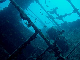Image illustrative de l'article SS Thistlegorm