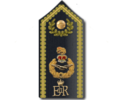 Air Officers Rank Shoulder Board.png