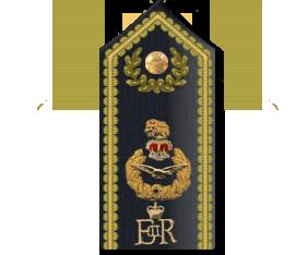 Air Officers Rank Shoulder Board