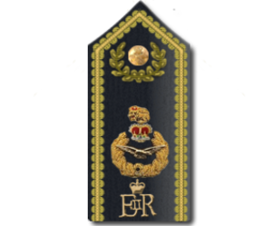 RAF officer ranks - Air officers' ceremonial shoulder board