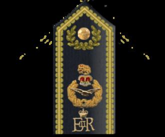 RAF officer ranks - Air officers' ceremonial shoulder board