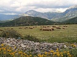 definition of albania