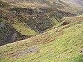 Allt Mor Gorge - geograph.org.uk - 106730.jpg