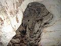 Altar Cave - bell hole in ceiling of main chamber & bats (San Salvador Island, Bahamas) 1 (16390311021).jpg