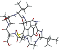 Amanullinic acid with tube model.png