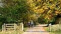 An Autumnal Stroll - geograph.org.uk - 336431.jpg