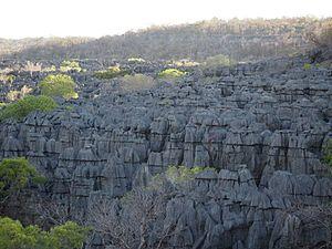 Antankarana - Numerous fady protect the Ankarana Reserve.