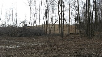 National Register of Historic Places listings in Butler County, Kentucky - Image: Annis Village Site