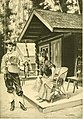 Annual report (1906) (14725773886).jpg
